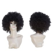 Short Shaggy Afro Curly Clown Fans Carnival Party Wig
